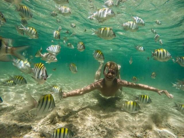 piscinas-naturais-serrambi-resort.jpg.1024x0